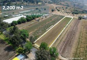 Foto de terreno industrial en venta en a texcoco 0, san nicolás tlaminca, texcoco, méxico, 0 No. 01