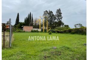 Foto de terreno habitacional en venta en San Lorenzo los Jagüeyes, Atlixco, Puebla, 21096676,  no 01