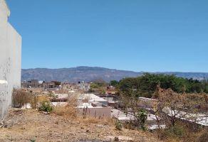 Foto de terreno habitacional en venta en Lomas Del Paraíso, Tequila, Jalisco, 6918775,  no 01
