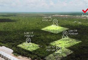 Foto de terreno habitacional en venta en Bahía Dorada, Benito Juárez, Quintana Roo, 17489745,  no 01