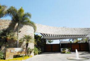 Foto de terreno habitacional en venta en Vista Hermosa, Cuernavaca, Morelos, 21658771,  no 01