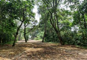 Foto de terreno habitacional en venta en abeto 1, arboledas san pedro, coatepec, veracruz de ignacio de la llave, 20306090 No. 01