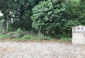 Foto de terreno habitacional en venta en abeto 1, arboledas san pedro, coatepec, veracruz de ignacio de la llave, 20306094 No. 01