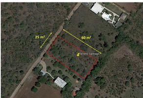 Foto de terreno habitacional en venta en abra abajo , punta la boca, santiago, nuevo león, 16309787 No. 01