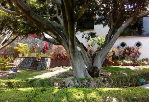 Foto de casa en renta en acacias 204, lomas de cuernavaca, temixco, morelos, 11164609 No. 02