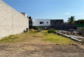 Foto de terreno habitacional en venta en  , acapatzingo, cuernavaca, morelos, 0 No. 01