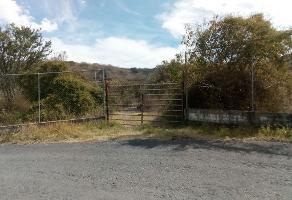Foto de terreno habitacional en venta en  , acatlan de juárez, acatlán de juárez, jalisco, 4708256 No. 02