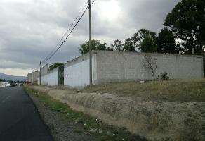 Foto de nave industrial en venta en  , actipac, tetla de la solidaridad, tlaxcala, 13770161 No. 01