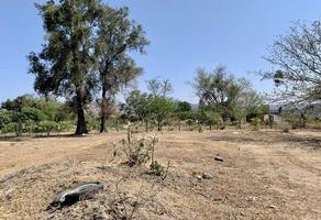 Foto de terreno habitacional en venta en acueducto a colimilla s/n , alamedas de san gaspar, tonalá, jalisco, 0 No. 01