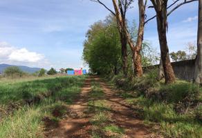 Foto de terreno habitacional en venta en  , aculco de espinoza, aculco, méxico, 12778535 No. 01