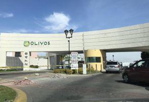 Foto de casa en renta en Nuevo México, Zapopan, Jalisco, 6515780,  no 01