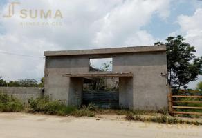 Foto de local en renta en  , adolfo lopez mateos, altamira, tamaulipas, 0 No. 01