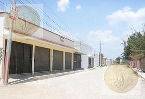 Foto de local en venta en  , adolfo lopez mateos, tequisquiapan, querétaro, 11767354 No. 01