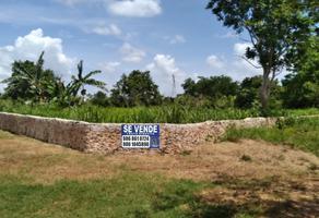 Foto de terreno habitacional en venta en  , adolfo lopez mateos, tizimín, yucatán, 0 No. 01