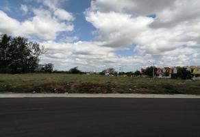 Foto de terreno habitacional en venta en aeropuerto 00, los torrentes, veracruz, veracruz de ignacio de la llave, 0 No. 01