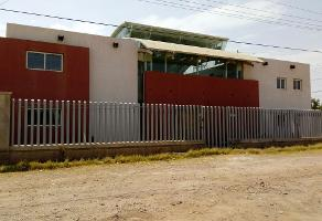 Foto de nave industrial en venta en  , aeropuerto, chihuahua, chihuahua, 14173961 No. 01