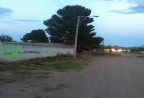 Foto de terreno habitacional en venta en  , aeropuerto, chihuahua, chihuahua, 18346313 No. 01