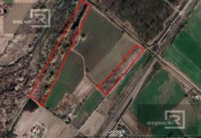 Foto de terreno habitacional en venta en  , aeropuerto, chihuahua, chihuahua, 20351323 No. 01