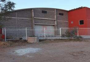 Foto de bodega en venta en  , aeropuerto, chihuahua, chihuahua, 22145152 No. 01