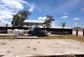 Foto de nave industrial en venta en  , aeropuerto, chihuahua, chihuahua, 6642643 No. 01