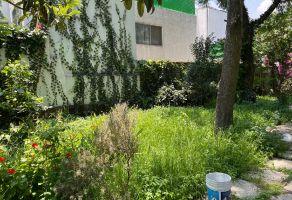 Foto de terreno habitacional en venta en Los Alpes, Álvaro Obregón, DF / CDMX, 21525020,  no 01