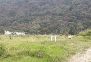 Foto de terreno habitacional en venta en Agraria, Río Blanco, Veracruz de Ignacio de la Llave, 13078628,  no 01