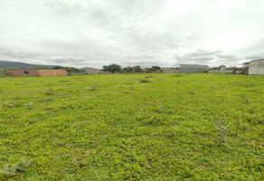 Foto de terreno habitacional en venta en  , agencia esquipulas xoxo, santa cruz xoxocotlán, oaxaca, 0 No. 01