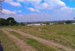 Foto de terreno habitacional en venta en agricola ganadera miguel alemán , coatzacoalcos centro, coatzacoalcos, veracruz de ignacio de la llave, 4644701 No. 01