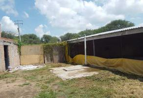 Foto de terreno comercial en venta en agricultura , agricultura, aguascalientes, aguascalientes, 12384208 No. 01