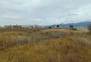 Foto de terreno habitacional en venta en agua blanca , agua blanca, taxco de alarcón, guerrero, 17292760 No. 01