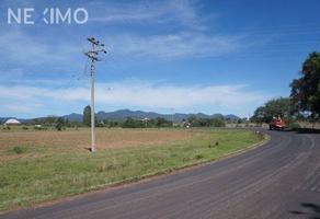 Foto de terreno comercial en venta en agua escondida 109, calapa, chignahuapan, puebla, 5891448 No. 01