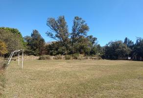 Foto de terreno habitacional en venta en , , agua escondida, ixtlahuacán de los membrillos, jalisco, 0 No. 01