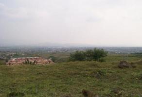 Foto de terreno habitacional en venta en  , ahuatepec, cuernavaca, morelos, 11895713 No. 01