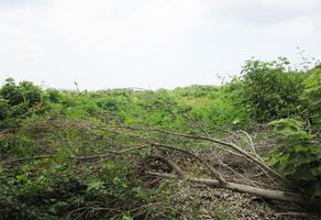 Foto de terreno habitacional en venta en  , ahuatlán, totolapan, morelos, 0 No. 01