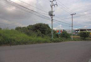 Foto de terreno habitacional en venta en  , ahuatlán tzompantle, cuernavaca, morelos, 11275886 No. 01