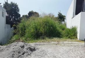 Foto de terreno habitacional en venta en  , ahuatlán tzompantle, cuernavaca, morelos, 9070163 No. 01