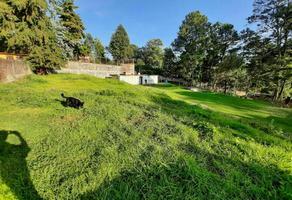 Foto de terreno habitacional en venta en ajahuayo , huitzilac, huitzilac, morelos, 0 No. 01