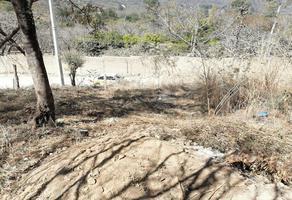 Foto de terreno habitacional en venta en al sabino , los sabinos, tuxtla gutiérrez, chiapas, 19366053 No. 01