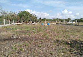 Foto de terreno habitacional en venta en  , álamo, altamira, tamaulipas, 0 No. 01