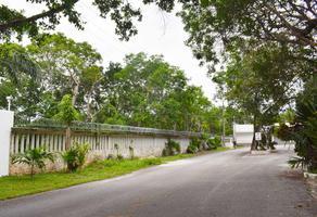Foto de terreno habitacional en venta en  , álamos i, benito juárez, quintana roo, 17411505 No. 01
