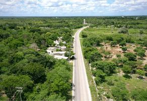 Foto de terreno habitacional en venta en  , álamos i, benito juárez, quintana roo, 21044078 No. 01