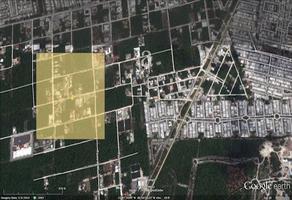 Foto de terreno habitacional en venta en alamos ii calle encino , colegios, benito juárez, quintana roo, 0 No. 01