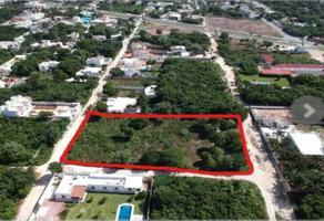 Foto de terreno habitacional en venta en alamos s/n , alfredo v bonfil, benito juárez, quintana roo, 19423288 No. 01