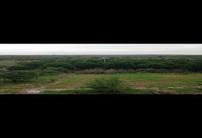Foto de terreno habitacional en venta en  , alberos, cadereyta jiménez, nuevo león, 16359854 No. 01