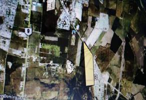 Foto de terreno habitacional en venta en  , alberos, cadereyta jiménez, nuevo león, 9001287 No. 01