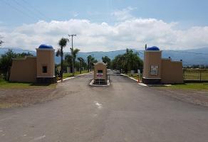 Foto de terreno habitacional en venta en alberto iii manzana 7, cajititlán, tlajomulco de zúñiga, jalisco, 0 No. 01