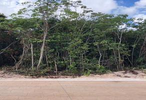 Foto de terreno habitacional en venta en alcanfor. 122, arbolada, benito juárez, quintana roo, 21486613 No. 01