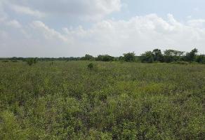 Foto de terreno habitacional en renta en  , aldama, aldama, tamaulipas, 0 No. 01