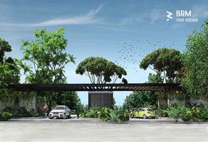 Foto de terreno habitacional en venta en aldea zama , tulum centro, tulum, quintana roo, 0 No. 01