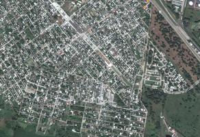 Foto de terreno habitacional en renta en  , alejandro briones, altamira, tamaulipas, 19242839 No. 01